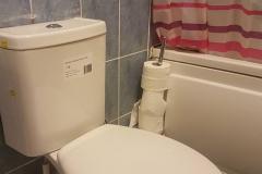 New toilet (2)