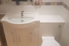 Toilet and basin vanity unit (2)